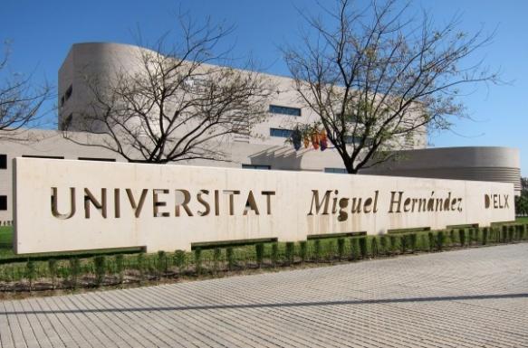 Universidad Miguel Hernández Elche